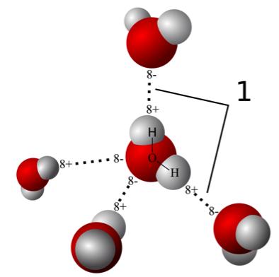 молекула воды2.png